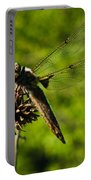 Smiling Dragonfly Portable Battery Charger