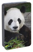Smiling Giant Panda Portable Battery Charger
