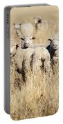 Smiling Sheep Portable Battery Charger