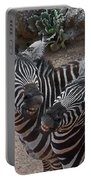Smiling Zebras Portable Battery Charger