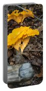 Smooth Chanterelle Portable Battery Charger