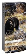 Snacking Bruin Portable Battery Charger