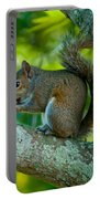 Snacking Squirrel Portable Battery Charger