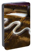 Snake Skeleton And Old Books Portable Battery Charger