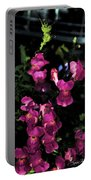 Snap Dragon Portable Battery Charger