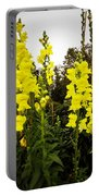 Snapdragons Portable Battery Charger