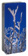 Snow And Ice Coated Branches Portable Battery Charger