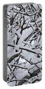 Snow Branches 2-1-15 Portable Battery Charger