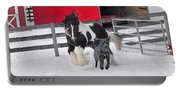 Snow Buddies Portable Battery Charger