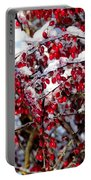 Snow Capped Berries Portable Battery Charger
