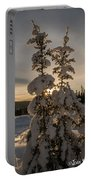 Snow Capped Sitka Spruce Portable Battery Charger