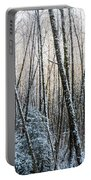 Snow Falls On The Alders  Astoria Portable Battery Charger