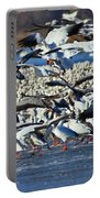 Snow Geese Portable Battery Charger