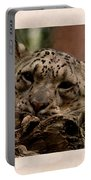 Snow Leopard 17 Portable Battery Charger