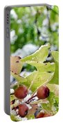 Snow On Green Leaves With Red Berries Portable Battery Charger