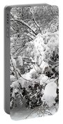 Snow Scene 4 Portable Battery Charger