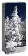 Snow Spruce Sunshine Portable Battery Charger