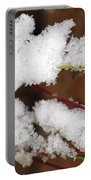 Snow Twig Abstract Portable Battery Charger