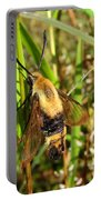 Snowberry Clearwing Portable Battery Charger