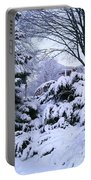 Snowmageddon 2014 Portable Battery Charger