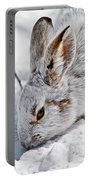 Snowshoe Hare Pictures 133 Portable Battery Charger