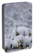 Snowy Portable Battery Charger