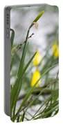 Snowy Daffodils Portable Battery Charger