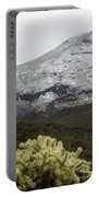 Snowy Desert Mountain 1 Portable Battery Charger