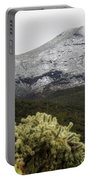 Snowy Desert Mountain Portable Battery Charger