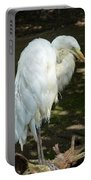 Snowy Egret 2 Portable Battery Charger