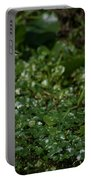 Snowy Egret 3 Portable Battery Charger