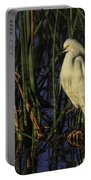 Snowy Egret In The Reeds Portable Battery Charger