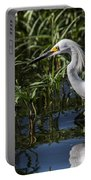 Snowy Egret Stalking Portable Battery Charger