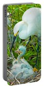 Snowy Egret Tending Young Portable Battery Charger