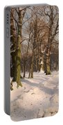 Snowy Forest Road 1908 Portable Battery Charger