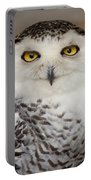 Snowy Owl 1 B Portable Battery Charger