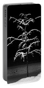 Snowy Sophistication - An Elegant Fledgling Portable Battery Charger