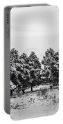Snowy Winter Pine Trees In Black And White Portable Battery Charger
