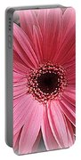Softly In Pink - Zinnia Portable Battery Charger