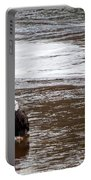 Solitary Eagle Portable Battery Charger
