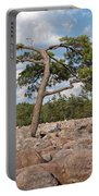 Solitary Tree Amidst Field Of Boulders Portable Battery Charger