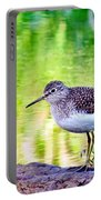 Solitary Sandpiper Portable Battery Charger