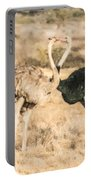 Somali Ostriches Kissing Portable Battery Charger