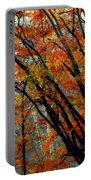 Song Of Autumn Portable Battery Charger