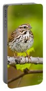 Song Sparrow Pictures 132 Portable Battery Charger