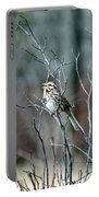 Songs Of Sparrows Portable Battery Charger