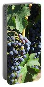 Sonoma Vineyards In The Sonoma California Wine Country 5d24630 Square Portable Battery Charger