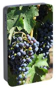 Sonoma Vineyards In The Sonoma California Wine Country 5d24630 Vertical Portable Battery Charger