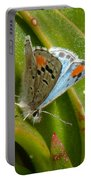 Sonoran Blue Portable Battery Charger