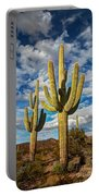Sonoran Desert Beauty Portable Battery Charger